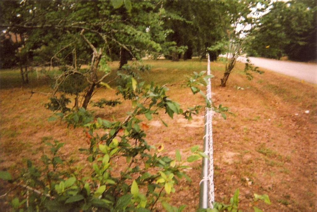 Hurricane Fence Line