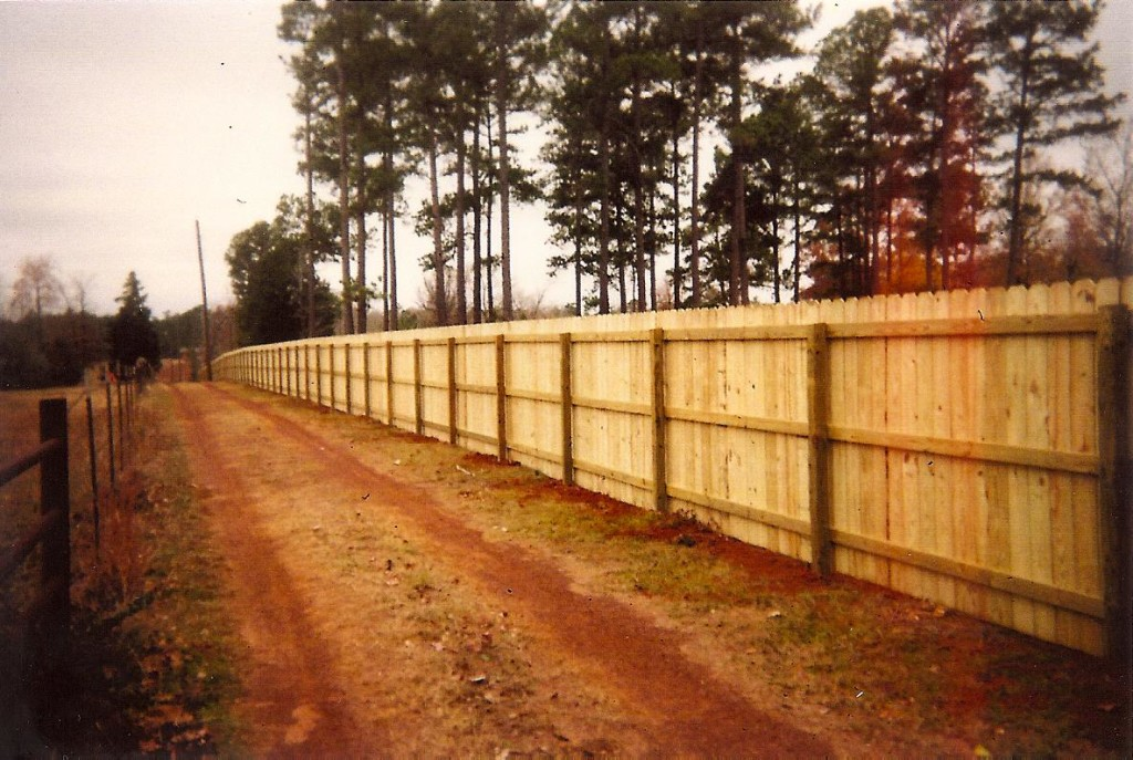 Privacy Fence Backside